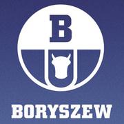 Сайдинг «Boryszew» (Борышев) в Запорожье и Украине
