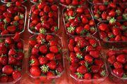 Бокс для ягод (пинетка)