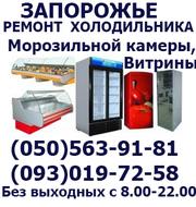 Профессинальный ремонт любых морозильных камер,  холодильников на дому