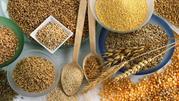 закупка зерна, дорого