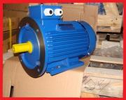 Электродвигатель електродвигун АИР 132 S8 4 кВт 700 об/мин