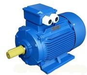 Электродвигатель електродвигун АИР 200 L8 22 кВт 700 об/мин