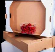 Лоток под фрукту,  ягоду и овощи