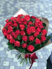 51 красная роза Эль Торо 50 см